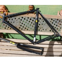 Frame and fork Pegoretti